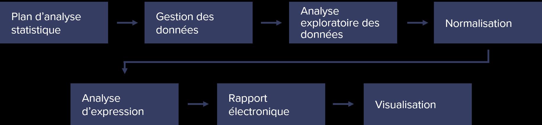 Bioinformatics Schema-FR