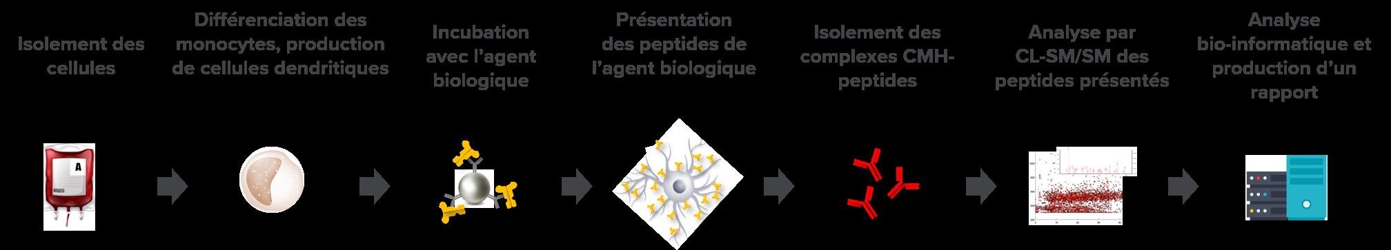 immunogenicity-fr