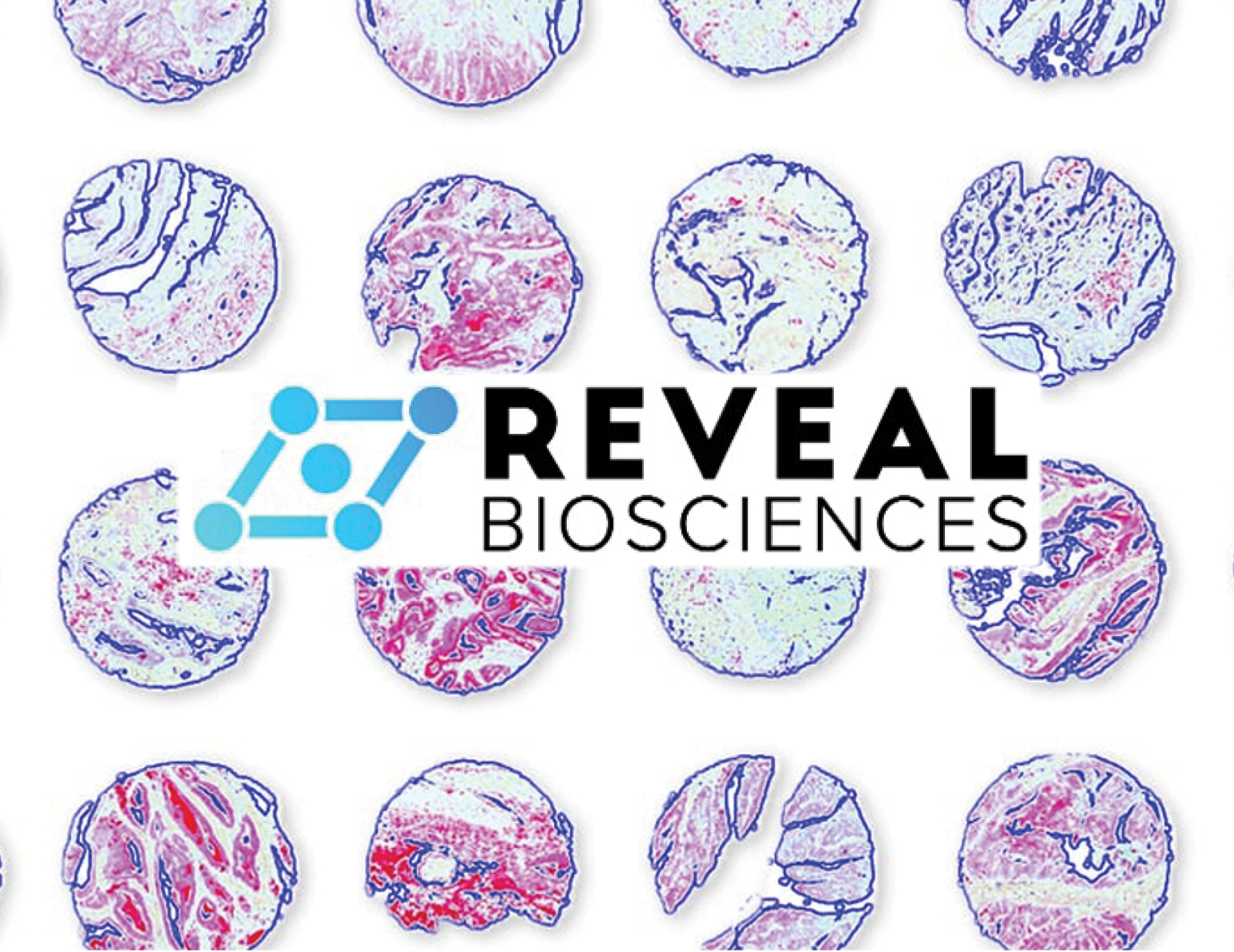Reveal Biosciences is now part of CellCarta